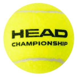 Tennis Ball  Head  Championship