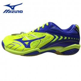 Badminton shoes Mizuno 171027