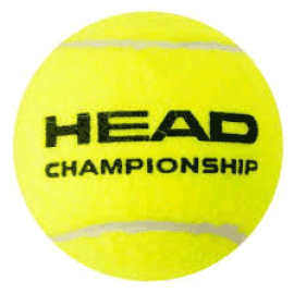 Tennis Ball  Head  Championship
